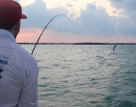 fly-fishing-miami-67