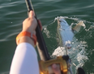 inshore-fishing-miami-120