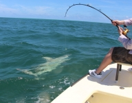 inshore-fishing-miami-62