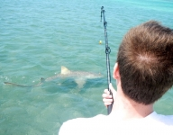 inshore-fishing-miami-86