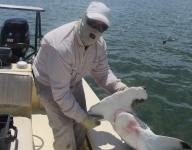 inshore-fishing-miami-88