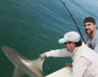 shark-fishing-57