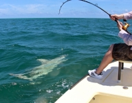 shark-fishing-miami-86
