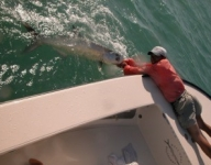 tarpon-fishing-14