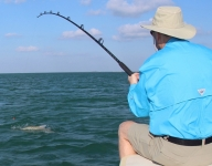 tarpon-fishing-232
