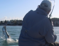 tarpon-fishing-263