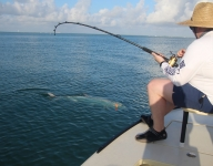 tarpon-fishing-303
