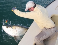 tarpon-fishing-304