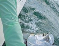 tarpon-fishing-34