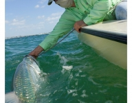 tarpon-fishing-36