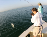 tarpon-fishing-71