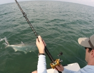 inshore-fishing-miami-38
