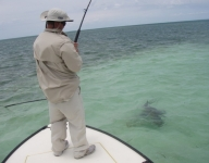 inshore-fishing-miami-46