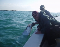 tarpon-fishing-17
