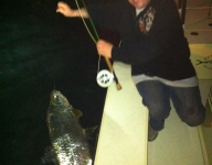 tarpon-fishing-267