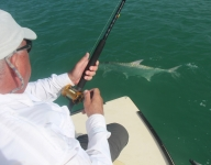tarpon-fishing-286