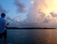 tarpon-fishing-332