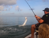 tarpon-fishing-336