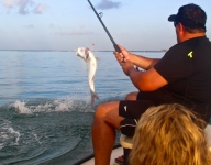 tarpon-fishing-337