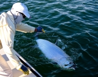 tarpon-fishing-366