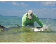 tarpon-fishing-37