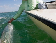 tarpon-fishing-38