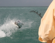 tarpon-fishing-85